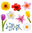 flower icons set 3 vector image