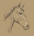 horse portrait-10 on brown background vector image vector image