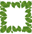 border green leaves with branch nature icon vector image