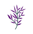 drawn tree branches purple leaves vector image