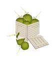 Fresh Green Coconuts in Wooden Cargo Box vector image vector image