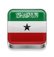 Metal icon of Somaliland vector image vector image