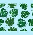 monstera leaf pattern on a blue background vector image