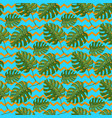 monstera plant seamless pattern on a blue vector image