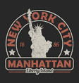 new york the statue of liberty grunge print vector image