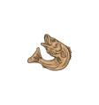 Rockfish Jumping Up Drawing vector image vector image