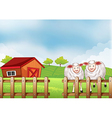 Sheeps inside the wooden fence with a barn vector image vector image