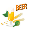 beer glass of beer barley background image vector image vector image