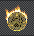 crypto currency iota golden symbol on fire vector image vector image