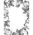 fruits engraving vector image