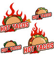hot tacos vector image