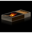Pack of matches on black background vector image