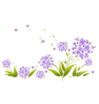 Spray blue agapanthus vector image