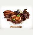 chocolate bars and pieces hazelnut and chocolate vector image vector image