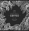 coffee tree branch vintage coffee background vector image