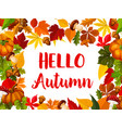 hello autumn greeting card with fall nature frame vector image vector image