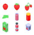 raspberry icons set isometric style vector image vector image