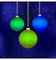 Set of Colorful Glass Balls vector image
