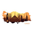 abstract landscape of istanbul with the main vector image