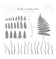 big collection of branch and leaf autumn vector image vector image