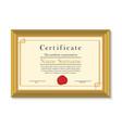 Certificate in golden frame vector image vector image