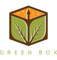 design template of the box with leaves vector image vector image