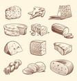 hand drawn cheese various types cheeses tasty vector image vector image