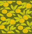 mandarin fruits hand drawn seamless pattern vector image