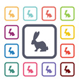 rabbit flat icons set vector image