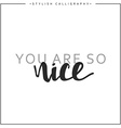 You are so nice phrase in handmade vector image vector image