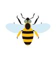 Bee flat icon vector image