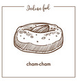 big soft cham cham with almond from indian food vector image