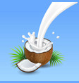coconut with milk splash vector image vector image