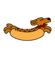 hot dog dachshund pet animal hotdog vector image