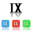 ix roman numeral icons colored set vector image