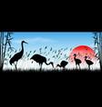 japanese cranes in wild vector image vector image