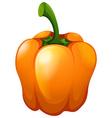 Orange bell pepper with stem vector image