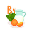 products with vitamin b4 jug of milk oranges and vector image