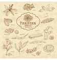 Set of spices and herbs cuisines Pakistan on old vector image