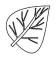 sketch contour of closeup wide leaf plant vector image vector image