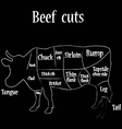 Beef cuts vector image