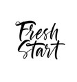 fresh start phrase modern calligraphy vector image