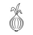 garlic food silhouette vector image vector image