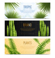 house plants in pot banners realistic banner set vector image vector image