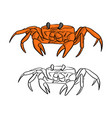 orange crab sketch doodle vector image