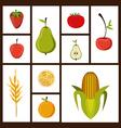 Organic Food design vector image vector image