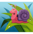 Snail vector image