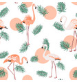 turquoise green tropical pink flamingo sun pattern vector image