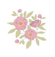 anemone flowers design vector image