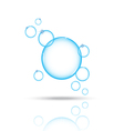 bubbles blue on white bg vector image vector image